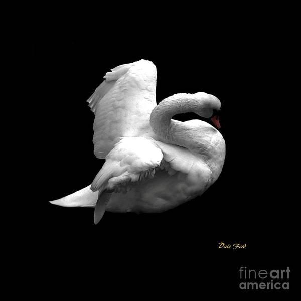Digital Art - Majestic Swan by Dale   Ford