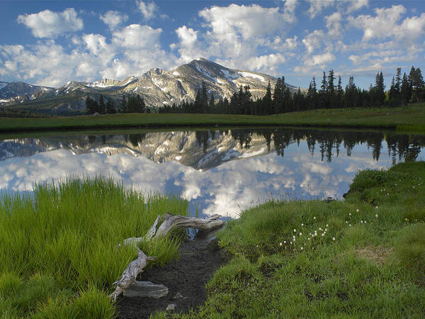 Photograph - Mammoth Peak And Scattered Clouds by Tim Fitzharris