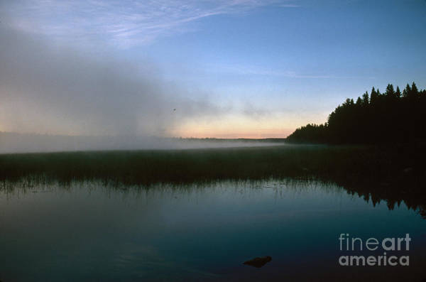 Photograph - Minnesota: Lake Itasca by Granger