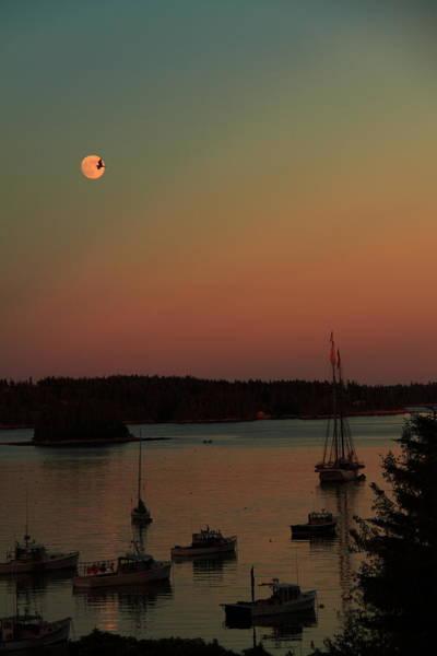Photograph - Moonlight Flight by Doug Mills