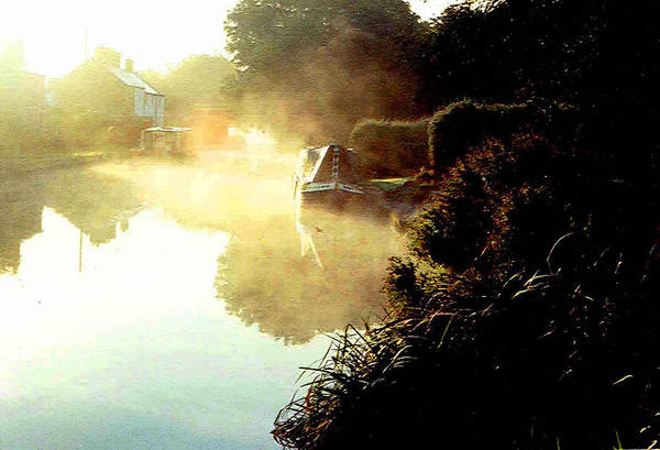 Wall Art - Photograph - Morning Mist by Mindy Newman