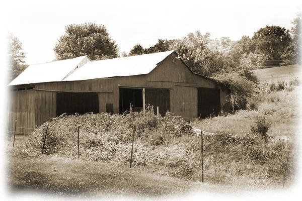 Photograph - Mountain Barn by Barry Jones