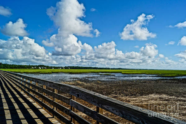 Wall Art - Photograph - Murrells Inlet by Matthew Trudeau