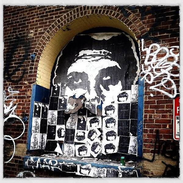 Wall Art - Photograph - Obey Giant by Natasha Marco