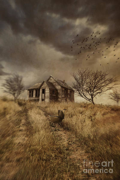 Photograph - Old Derelict Farm House On The Prairies by Sandra Cunningham