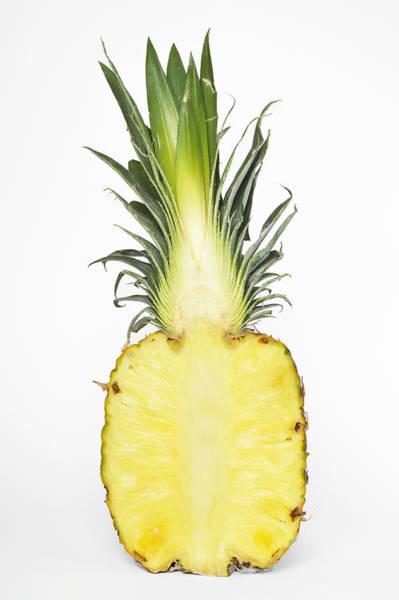 Pineapple Photograph - Pineapple Ananas Comosus by Matthias Hauser