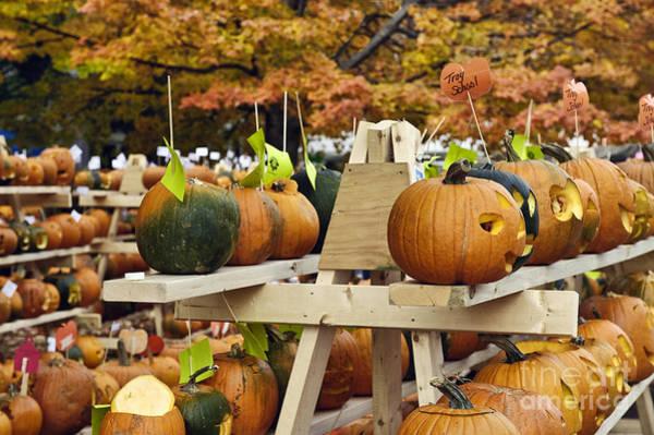 Pumkin Wall Art - Photograph - Pumpkin Festival by John Greim