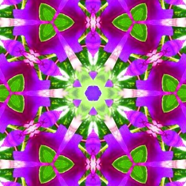 Fractal Wall Art - Photograph - #purple And #green #fractalart #mandala by Pixie Copley