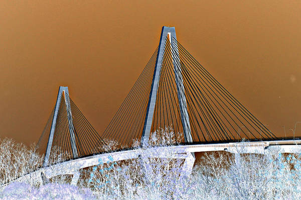 Photograph - Ravenel Bridge by Donna Bentley