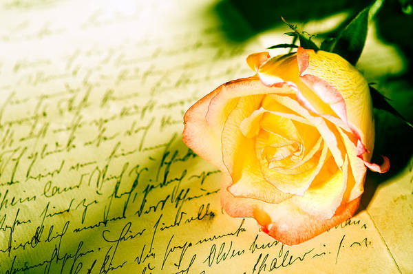 Photograph - Red Yellow Rose Over A Hand Written Letter by U Schade