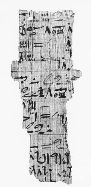 Cursive Photograph - Rhind Papyrus by Photo Researchers