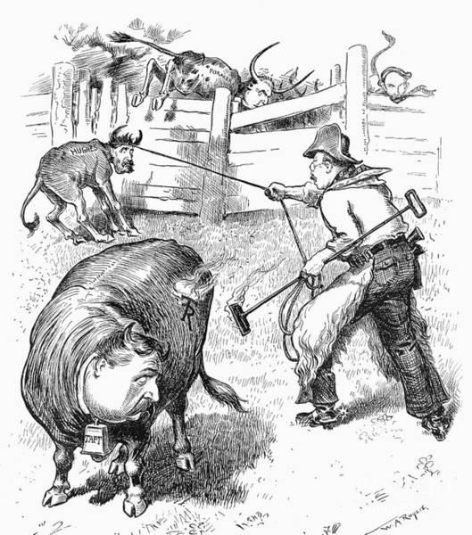 Branding Iron Photograph - Roosevelt Cartoon, 1907 by Granger