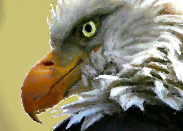 Eagle Eye Art Print by Carrie OBrien Sibley