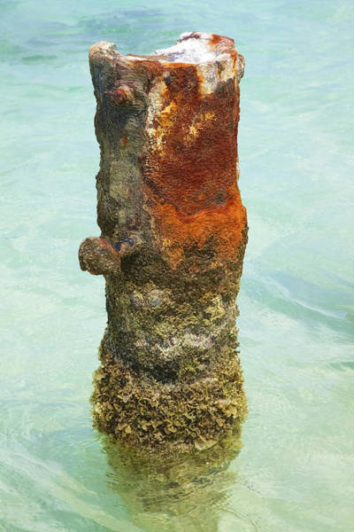Photograph - Rusted Dock Pier Of The Caribbean Vii by David Letts