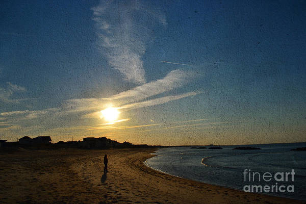 Shirleys Bay Photograph - Setting by Shirley  Taylor