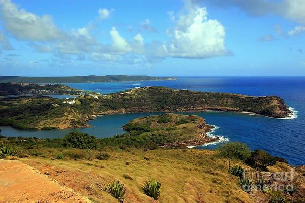 Shirleys Bay Photograph - Shirleys Heights Antigua by Sophie Vigneault