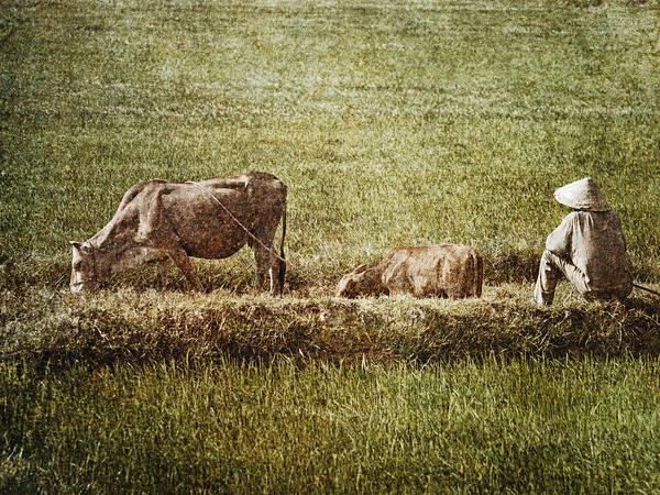 Wall Art - Photograph - Sitting by Skip Nall