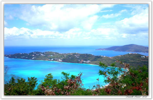 Photograph - St-thomas Virgin Islands  by Danielle  Parent