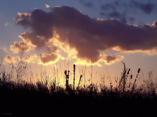 Photograph - Summer Sunset by Lauren Radke