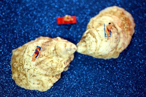 Sunbather Wall Art - Photograph - Sunbather On Oyster Shells by Paul Ge