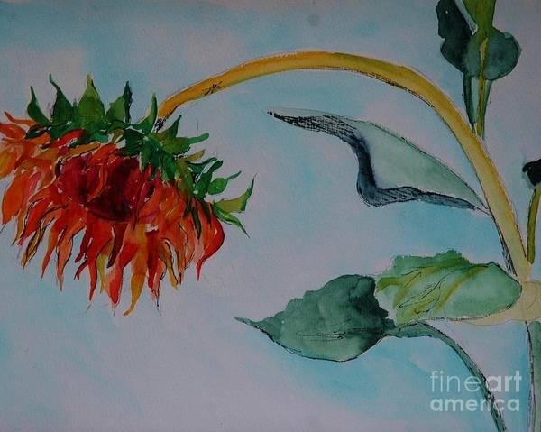 Painting - Sunflower by Melinda Etzold
