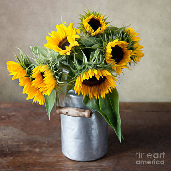 Wall Art - Photograph - Sunflowers by Nailia Schwarz