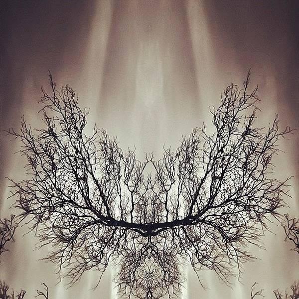 #symmetry #symmetrical #mirror Art Print