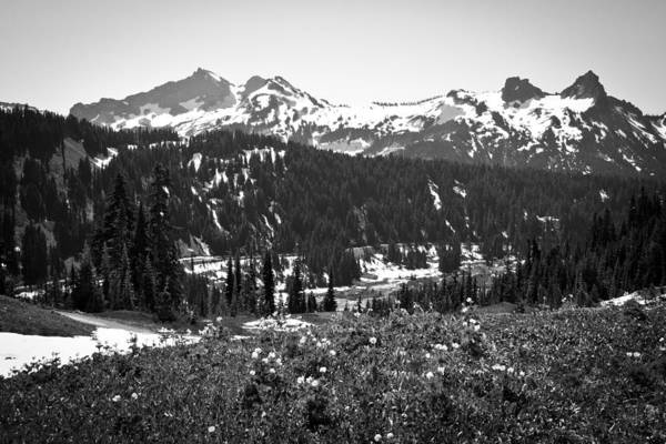 Photograph - Tatoosh Range In The Cascade Mountains by David Patterson