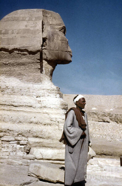 Photograph - The Great Sphinx by Granger