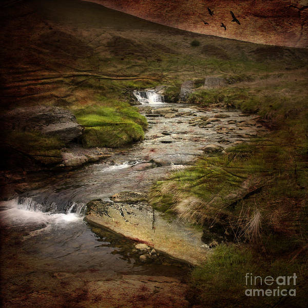 Wall Art - Photograph - the river Wye by Angel Ciesniarska