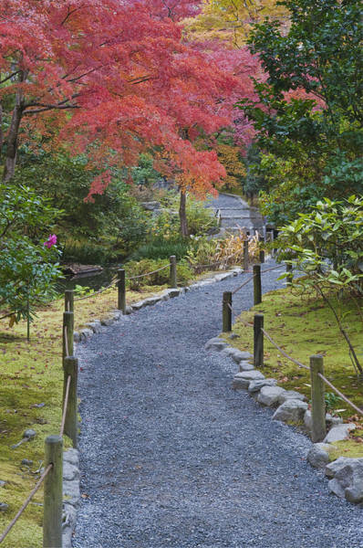Made In Japan Wall Art - Photograph - The Tenruyuji Temple Is A Zen Buddist by Rob Tilley