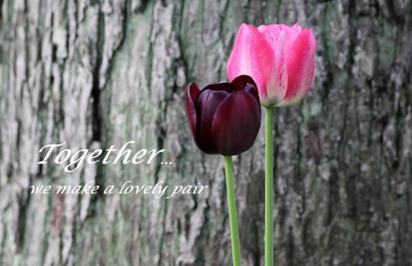 Proverb Photograph - Together by Deborah  Crew-Johnson