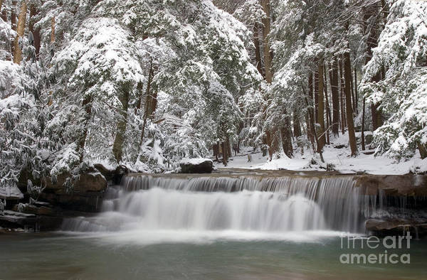 Swallow Falls State Park Wall Art - Photograph - Tolliver Falls by Jeannette Hunt