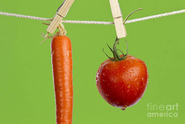 Wall Art - Photograph - Tomato And Carrot by Blink Images