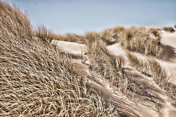Oregon Sand Dunes Photograph - Tranquility by Bonnie Bruno