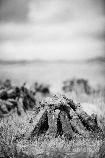 Smallholding Photograph - Turf Peat Stacked For Drying On The Bog In Ireland by Joe Fox