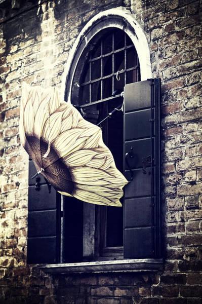 Umbrella Photograph - Umbrella by Joana Kruse