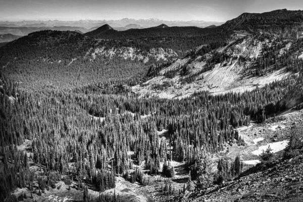 Photograph - View From Sourdough Ridge On Mt Rainier by David Patterson