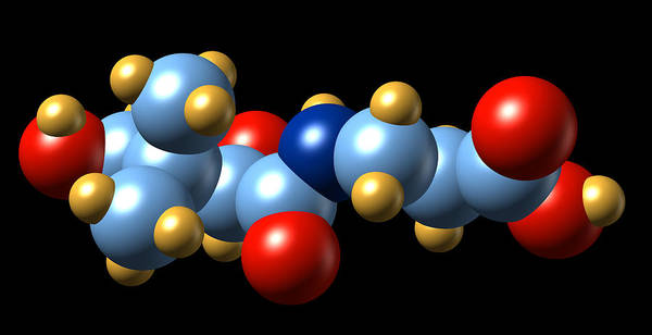Pantothenic Acid Photograph - Vitamin B5, Molecular Model by Dr Mark J. Winter