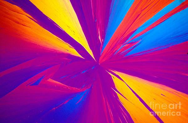 Photograph - Vitamin E Crystal by Michael W Davidson