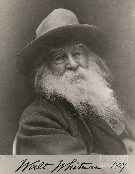Photograph - Walt Whitman by Photo Researchers