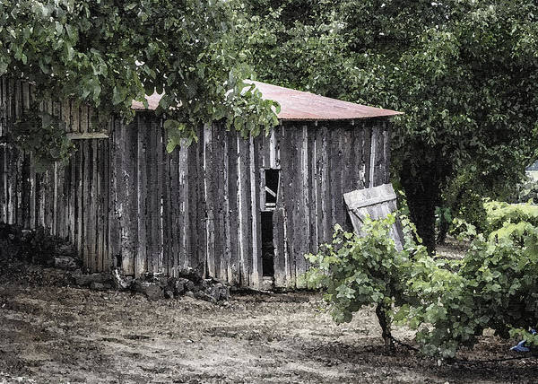 Photograph - Watercolor Barn by Joan Carroll
