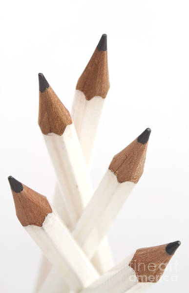 Pencil Drawing Photograph - White Pencils by Blink Images
