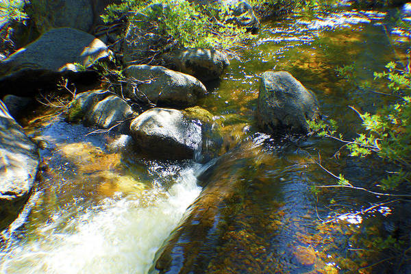 Photograph - White Wolf Creek by M Valeriano
