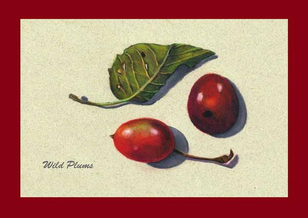 Juicy Drawing - Wild Plums And Leaf by Joyce Geleynse