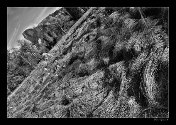 Photograph - Yosemite Dried Grass  by Blake Richards