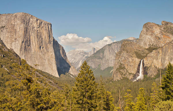 Photograph - Yosemite Trio by Pam  Holdsworth