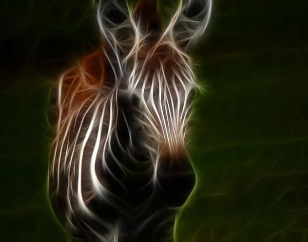 Digital Art - Zebra Foal Fractalius by Maggy Marsh
