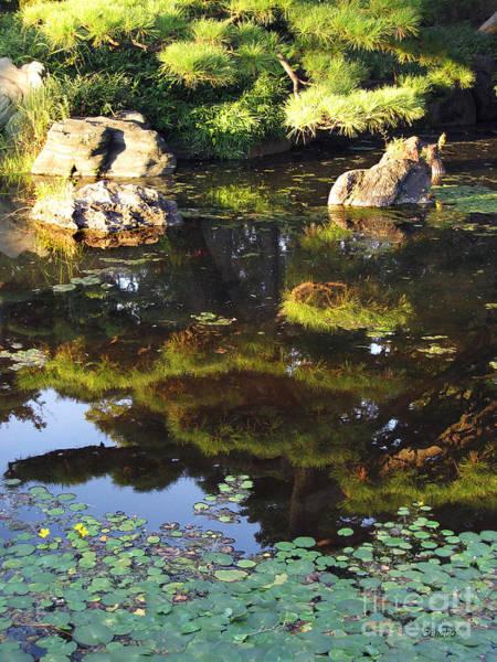 Photograph - Zen Garden by Eena Bo