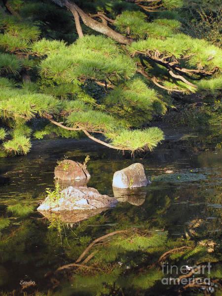Photograph - Zen by Eena Bo